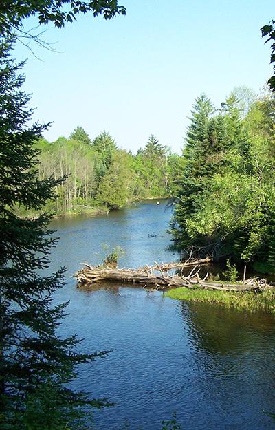 Au Sable River - Trout Unlimited