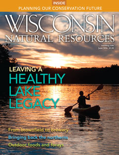Wisconsin Natural Resources_June 2016